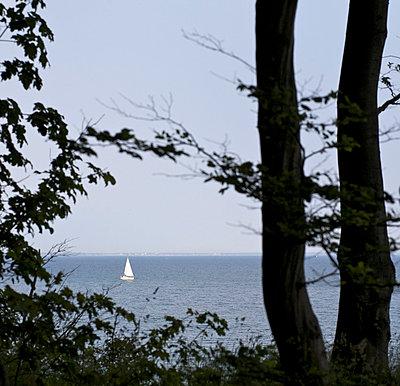 Segelboot - p6060551 von Iris Friedrich