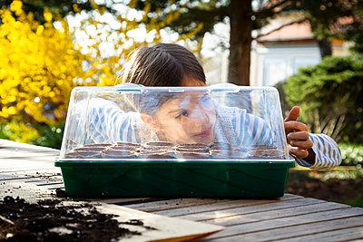 Girl looking in her little greenhouse - p300m2180928 by Larissa Veronesi