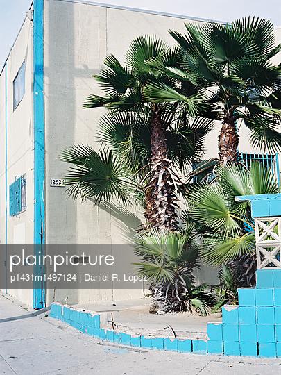 Cyan Tropics - p1431m1497124 by Daniel R. Lopez