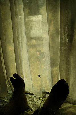 Feet and fly on a curtain - p1570m2172541 by DOROTHY-SHOES