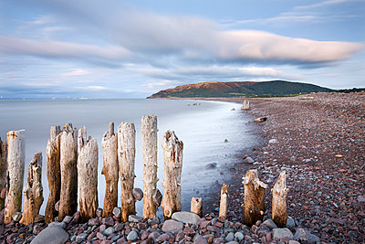 Wooden groyne sea defences on Porlock Beach - p871m732014 by Adam Burton