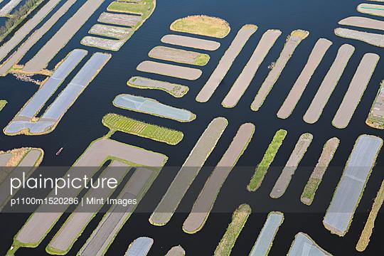 p1100m1520286 von Mint Images
