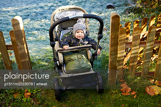 A baby in a buggy - p1511m2223079 by artwall