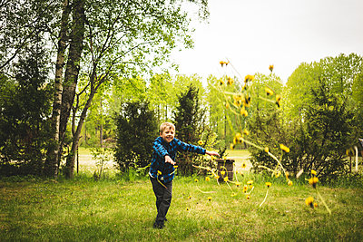 Boy throwing dandelion flowers - p312m2092030 by Henrik Kindgren