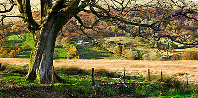 Farmland in Senni Valley in the Fforest Fawr, Brecon Beacons National Park, Wales, United Kingdom, Europe - p8713112 by Adam Burton