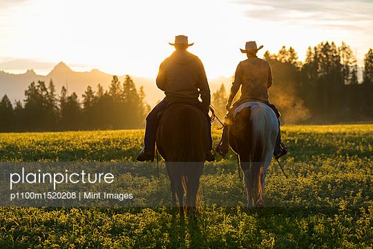 p1100m1520208 von Mint Images