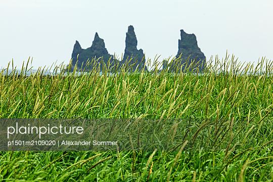 Seashore, Iceland - p1501m2109020 by Alexander Sommer