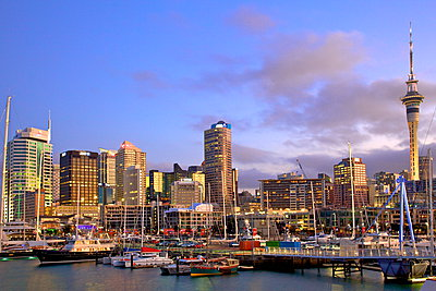 Auckland City and Harbour, Auckland, North Island, New Zealand, Pacific - p871m947283 by Neil Farrin photography