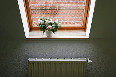 Dachfenster-Deko - p1650315 von Andrea Schoenrock