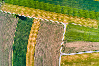 Germany, Baden-Wuerttemberg, Rems-Murr-Kreis, Aerial view of fields - p300m1587841 by Stefan Schurr