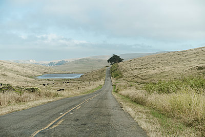 Empty road at Point Reyes in California, USA - p300m2290452 by VITTA GALLERY