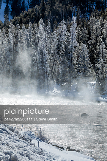 USA, Idaho, Stanley, Salmon River in winter - p1427m2283111 by Steve Smith