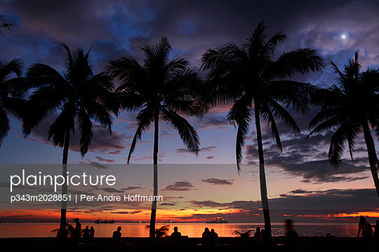 Palm trees against sky at sunset, Manila, Philippines - p343m2028851 by Per-Andre Hoffmann