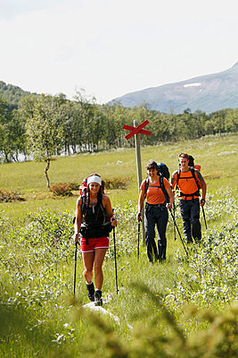 Smiling hikers walking - p312m798773 by Håkan Hjort