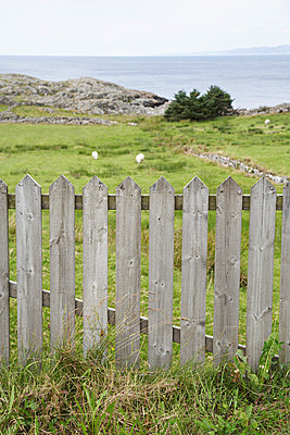 Fence and landscape of Norway - p4641418 by Elektrons 08