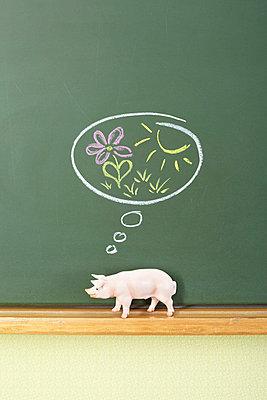 Glückliches Schwein - p4641767 von Elektrons 08