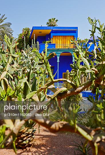 Jardin Majorelle - p1310m1162083 von Uwe Ditz