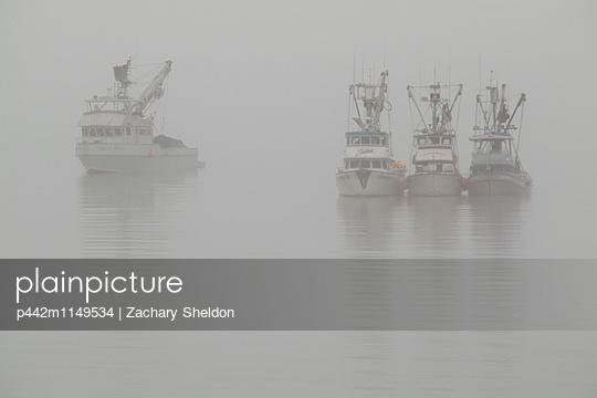 p442m1149534 von Zachary Sheldon