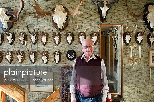 p528m696656 von Johan Willner
