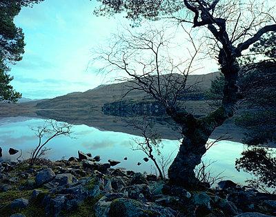 Scotland - p803m2270249 by Thomas Balzer
