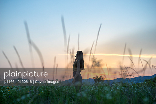 a silhouette of women in a flower garden where the sun sets. - p1166m2130818 by Cavan Images