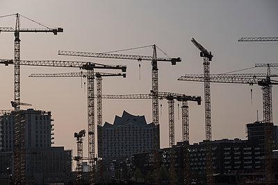 Several cranes on construction site, Hamburg harbour - p229m2263870 by Martin Langer