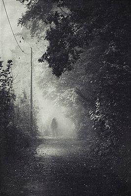 Silhouette of a man on path during fog - p300m1113417f by Dirk Wüstenhagen