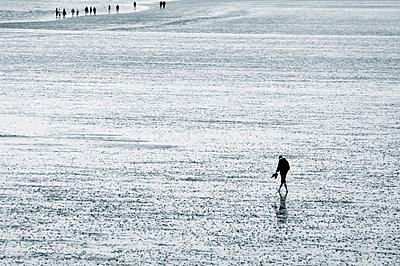 Nordsee - p992m721037 von Carmen Spitznagel