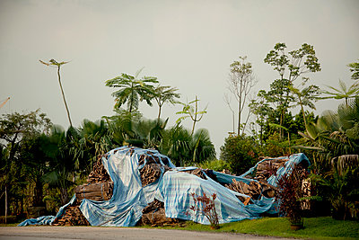 Timber covered with plastic sheeting - p1385m1424412 by Beatrice Jansen