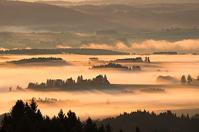 Germany, Bavaria, Upper Bavaria, Allgaeu, Pfaffenwinkel, View from Auerberg near Bernbeuren, morning fog over Lech Valley - p300m1535477 by Martin Siepmann