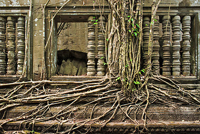 Ta Prohm Temple - p871m757421 by Andrew Stewart