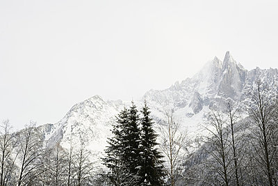 Trees and mountain in french alps - p9243844f by Image Source