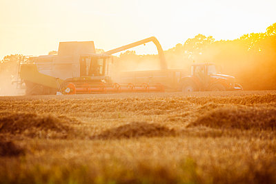 Landwirtschaft - p1057m1072082 von Stephen Shepherd
