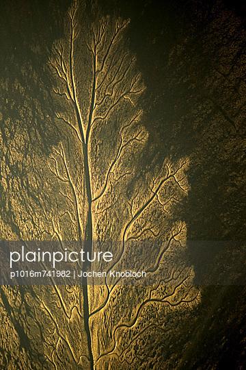 Linnenplatte im Wattenmeer - p1016m741982 von Jochen Knobloch