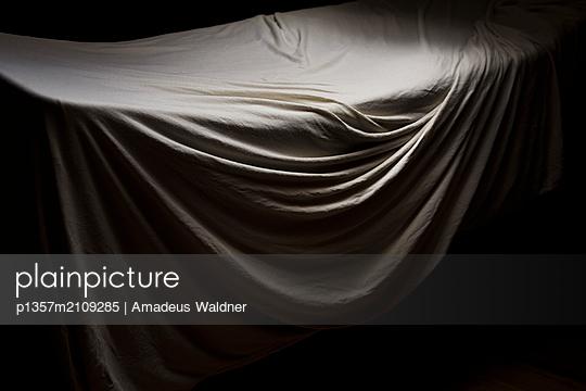 p1357m2109285 by Amadeus Waldner