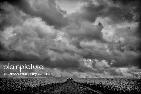 p378m2061608 von Rory Garforth