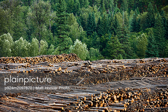 Timber yard, Midway, Canada - p924m2097870 by Matt Hoover Photo