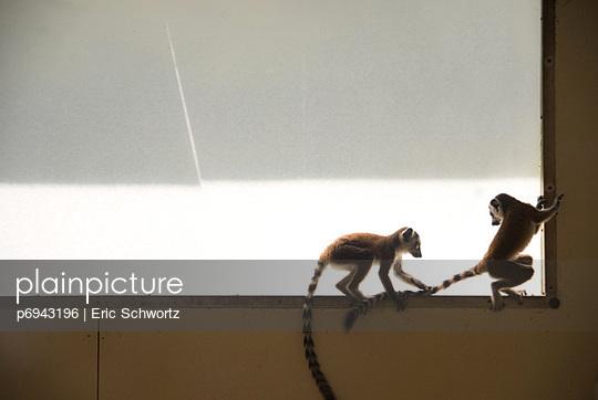 p6943196 von Eric Schwortz