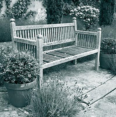 Garden Bench - p3310108 by MATTHEW NOBLE