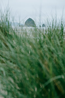 Haystack Rock  - p1262m1440876 by Maryanne Gobble