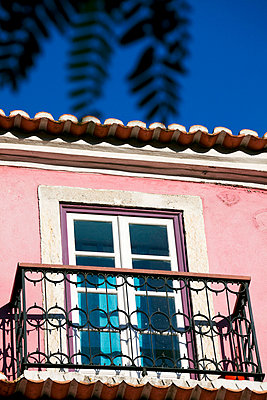 Closed window and pink wall - p4320536 by mia takahara