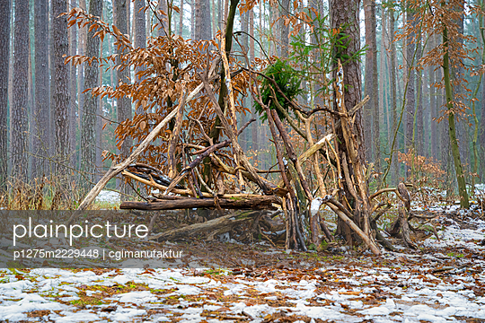 Germany, Bavaria, Twig teepee in the forest - p1275m2229448 by cgimanufaktur