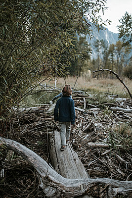 Rear view of brothers walking on log amidst forest at Yosemite National Park - p1166m1526865 by Cavan Images