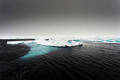 Spitzbergen - p1256m1057611 von Sandra Jordan