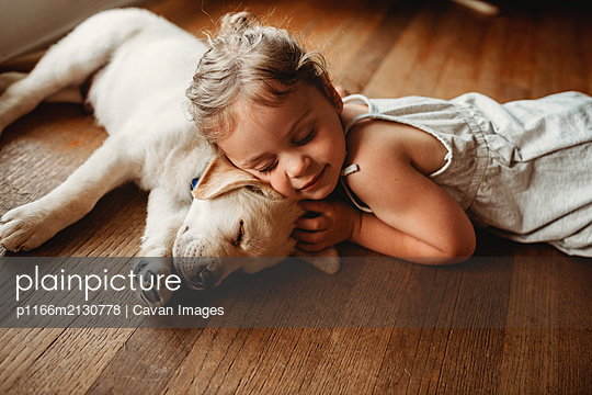 yellow Labrador lab puppy snuggling with little girl - p1166m2130778 by Cavan Images