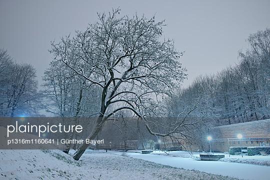 Schnee bedeckt Bäume und Kanal im Glacis Park bei Nacht, Neu-Ulm, Bayern, Deutschland - p1316m1160641 von Günther Bayerl