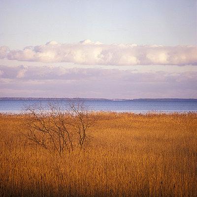 Einsame Landschaft - p2200150 von Kai Jabs
