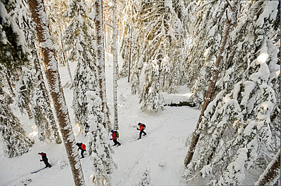 High angle view of people cross country skiing - p575m1074600f by Fredrik Schlyter