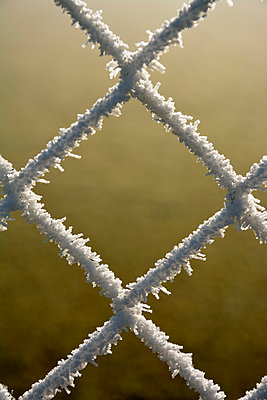 wire mesh fence with ice crystals - p876m1424695 by ganguin