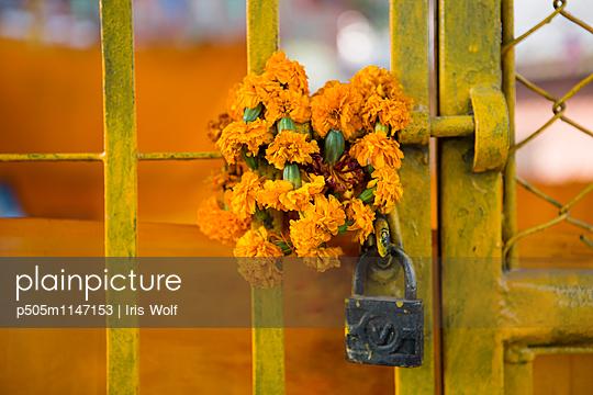 Schloss - p505m1147153 von Iris Wolf